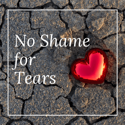 No Shame for Tears by Marlayna Fire