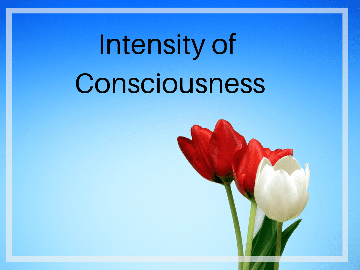 Intensity of Conscousness